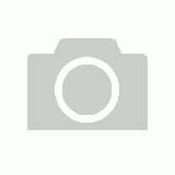 WISECO K24 14.5:1 COMP 88.0MM FORGED PISTON KIT